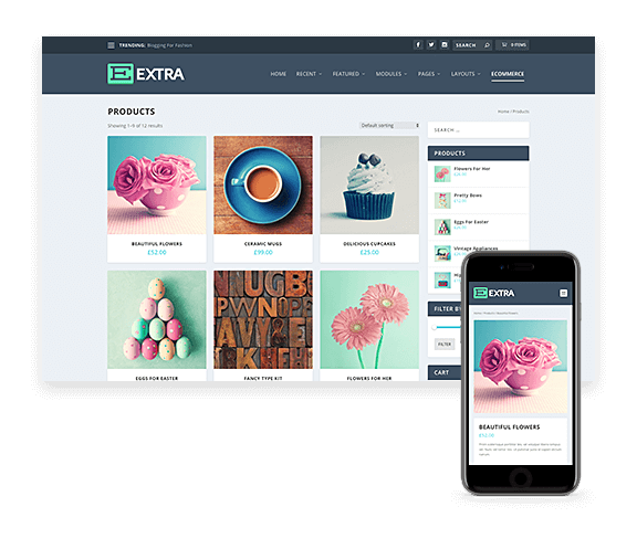 wordpress-webbshop-design-extra