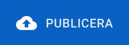 Knappen publicera – bild från hemsideprogrammets gränssnitt.